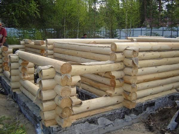 строительство бани из оцилиндрованного бревна естественной влажности